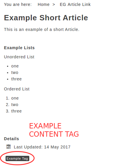 tag example front end